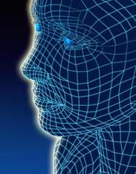 nervous-system-uk